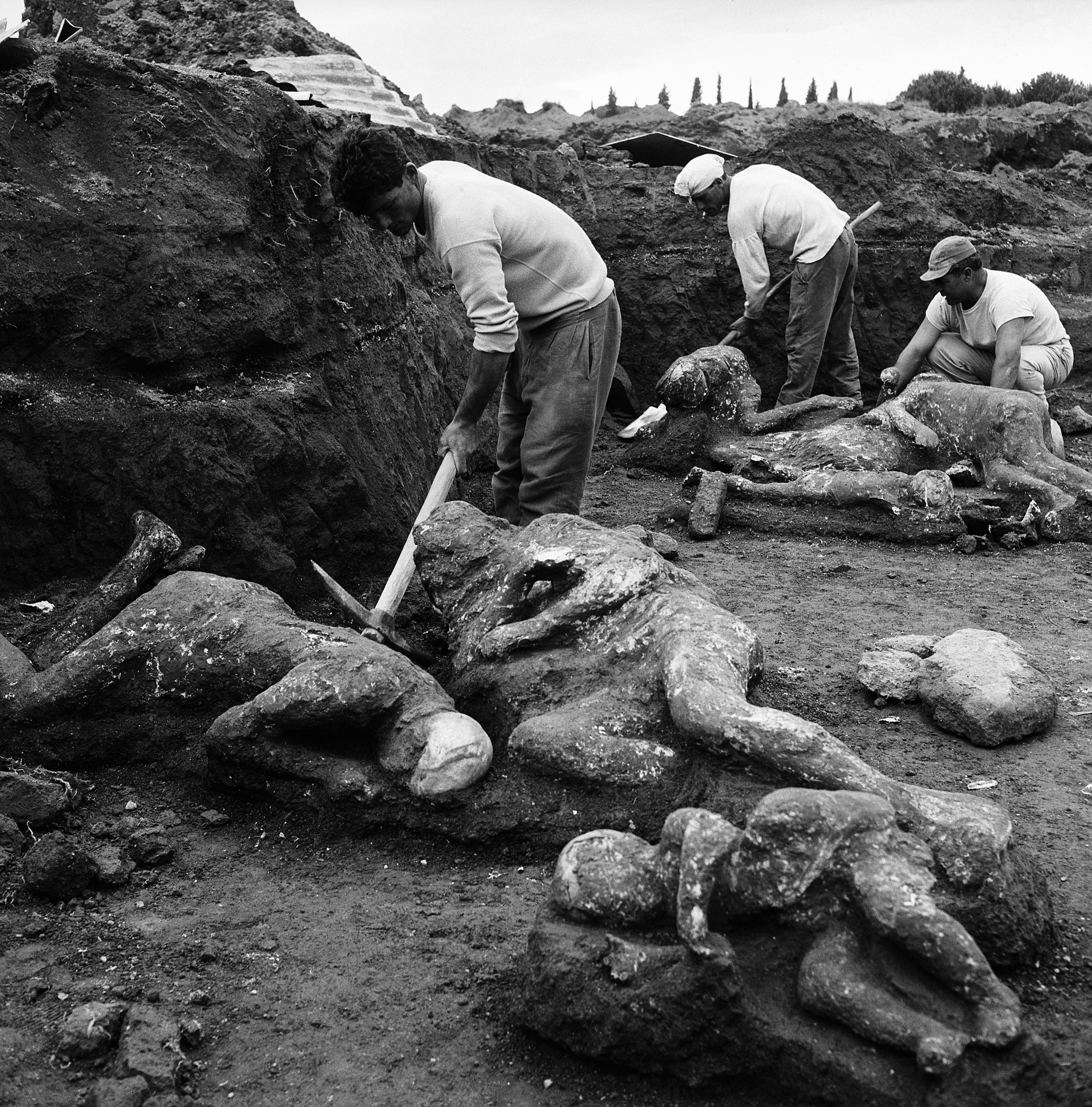 Archaeologists unearth victims in the Garden of the Fugitives.