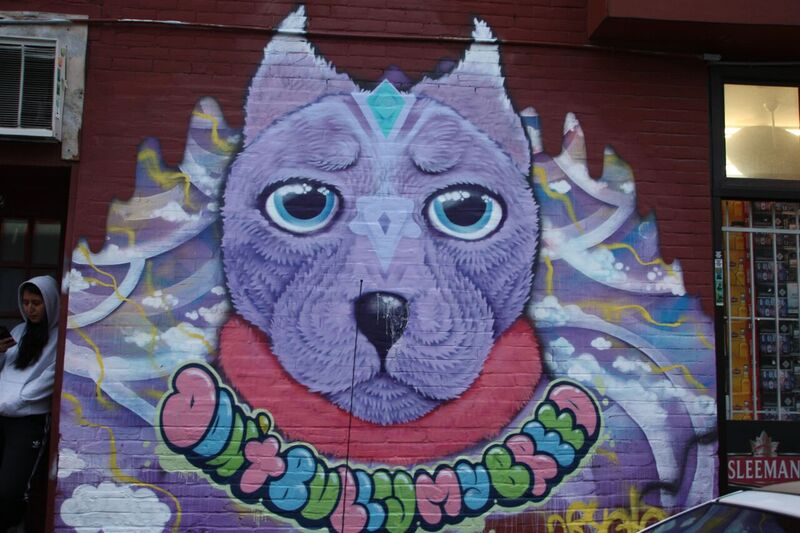 """""""Don't bully my breed"""" pit bull mural in the Plateau by artist Cryote. Photo by Savanna Craig."""