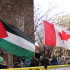 Supporters were seen at the International Day of Solidarity with Palestine. Photo by Alex Hutchins