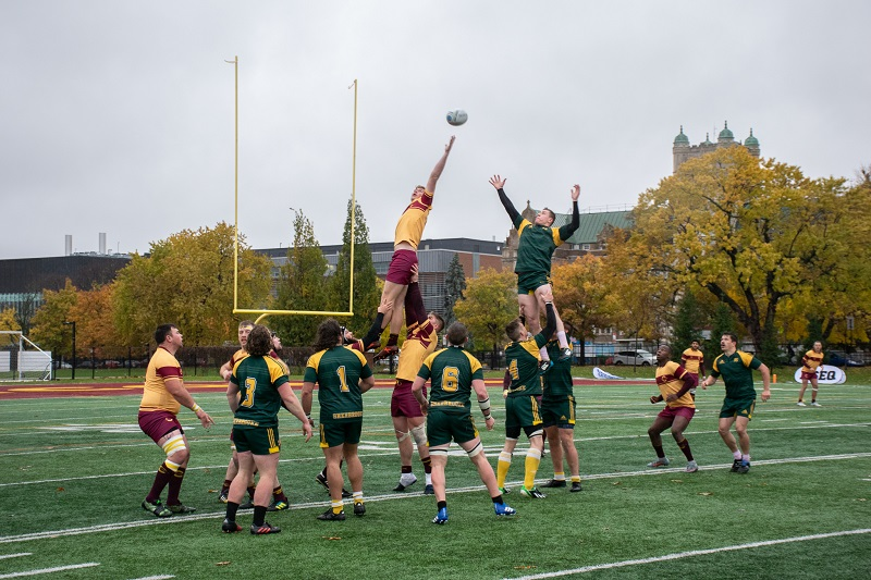 stingers rugby