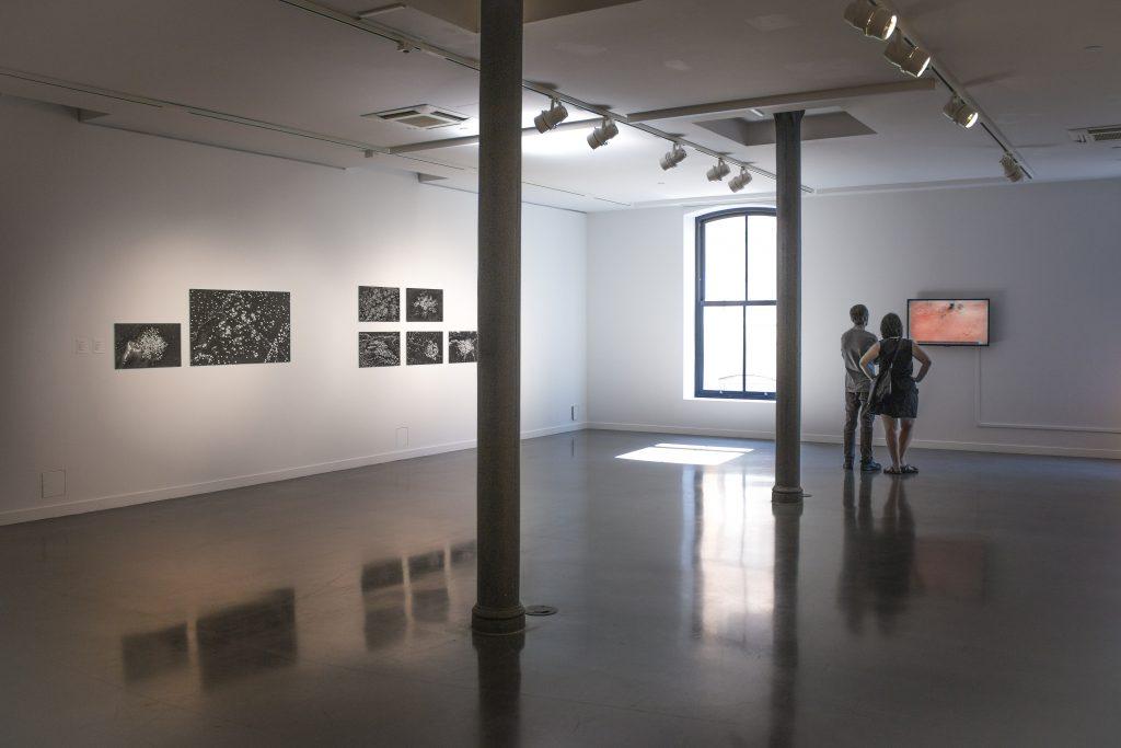 Gallerygoers perusing Pugin's enlightening work. Photo by Kelsey Litwin.