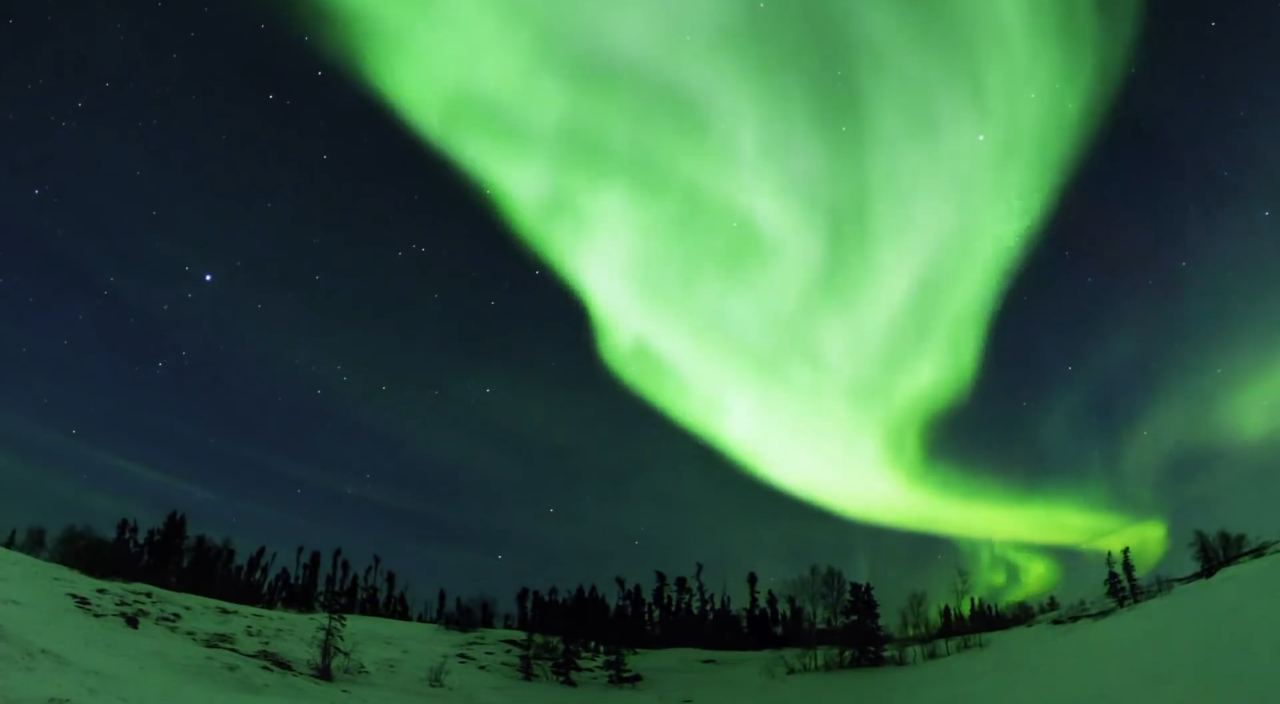 Experience the wonder of the northern lights in the aurōrae show.