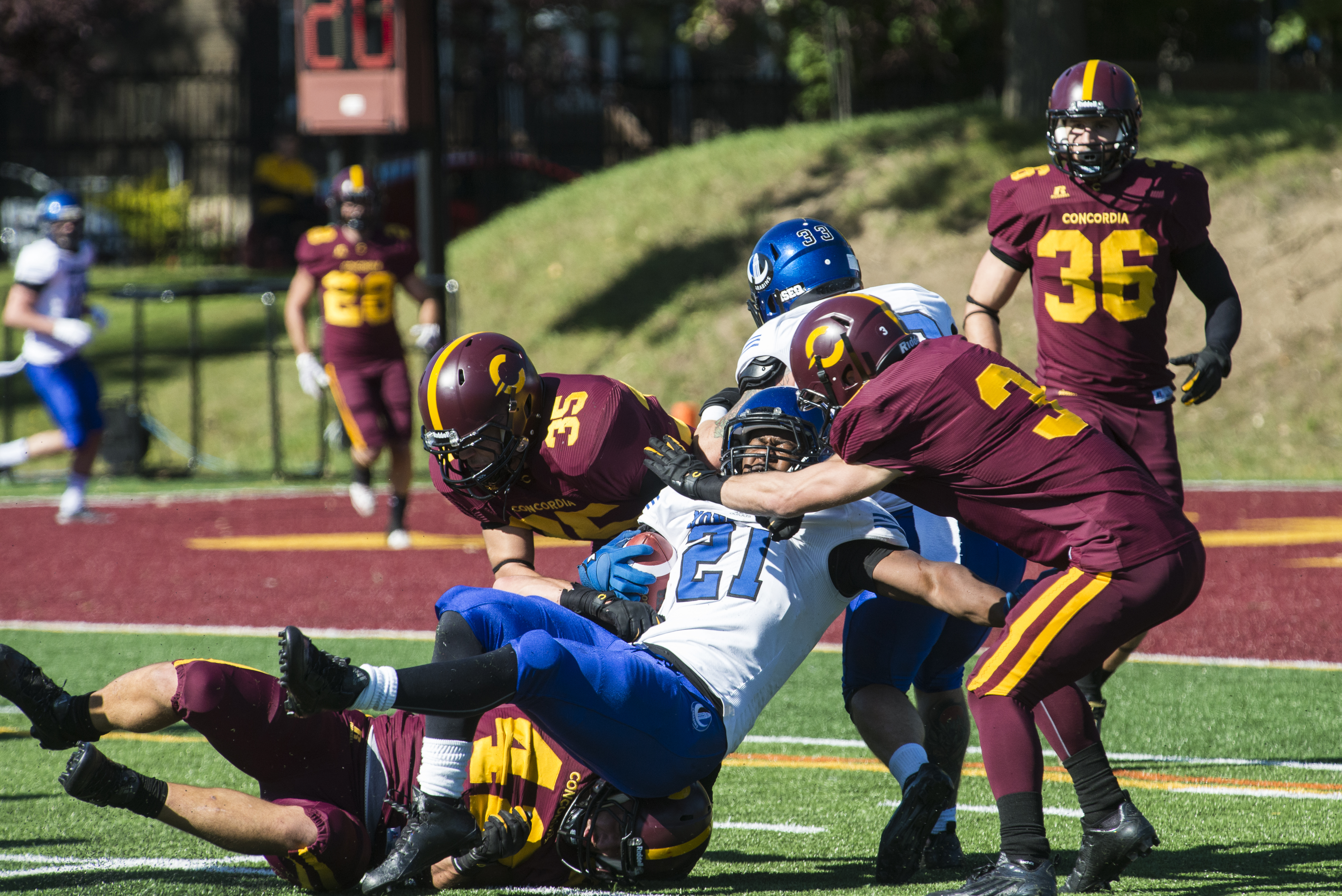 The Stingers hope to defeat teams like the Carabins next season. Photo by Andrej Ivanov.
