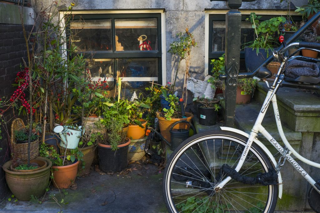 Flowers and bike by a house entrance along one of the city's main canal: the Keizersgracht. Photo by Elisa Barbier