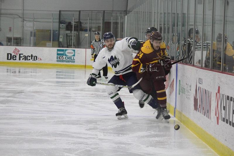 stingers men's hockey