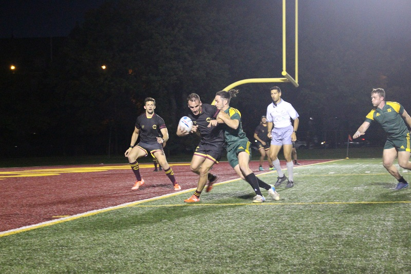 stingers men's rugby